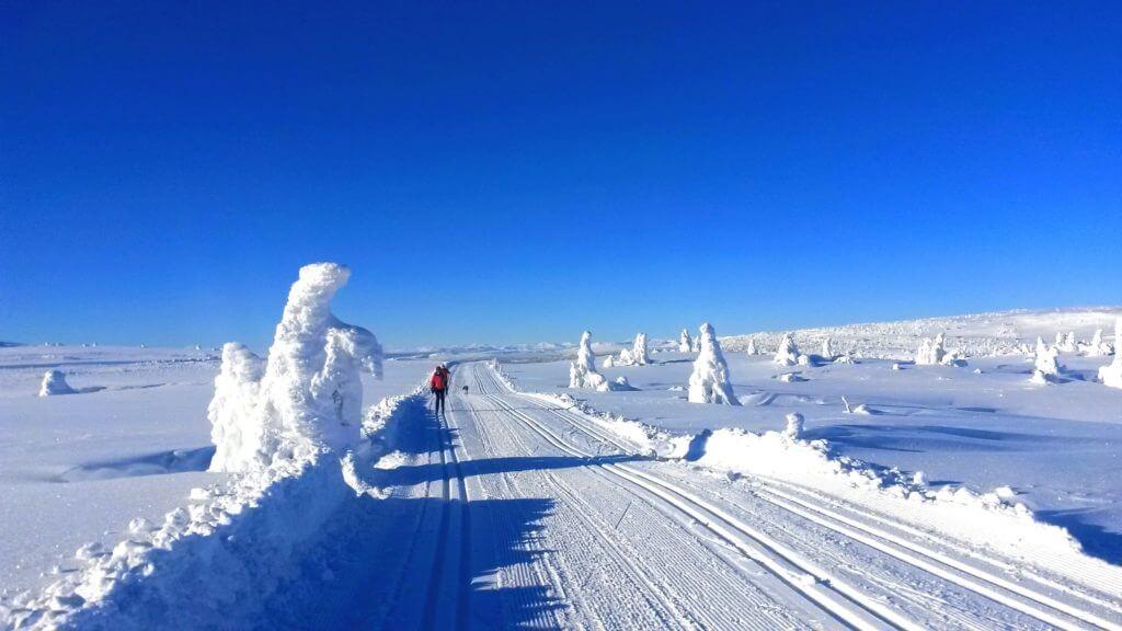 Sjusjøen er en av Norges mest populære destinasjoner. Bilde: Destinasjon Sjusjøen